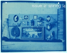 Issue 2: Spring 14